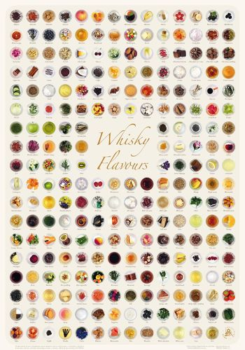 Whisky Flavours Collection - Poster 70x100cm Standard Edition